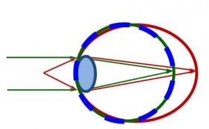 Физиология нарушения зрения